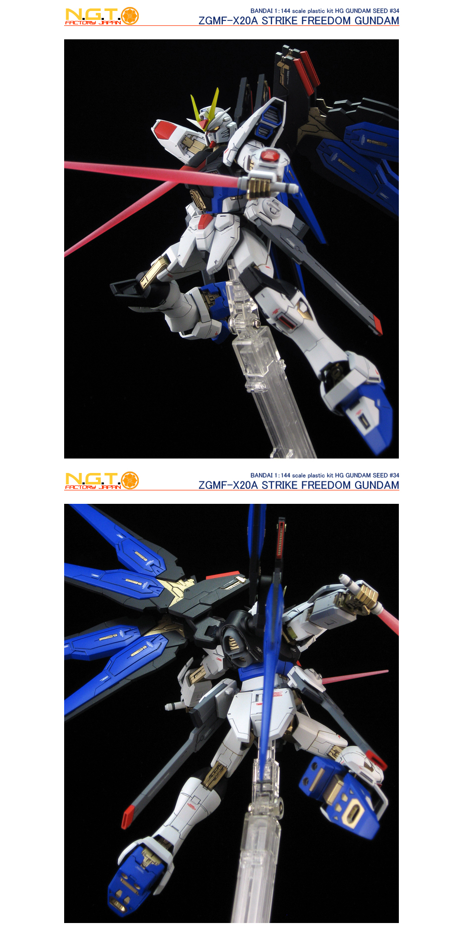 144strikefreedom24.jpg